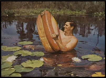 Hotdog-Wrestling-Man.jpgHotdog Wrestling Man Jpg, Gordon Carlisle, Florida, Dogs Wrestling, Collage, Drinks, Food Art, Dogs Country, Hot Dogs Art
