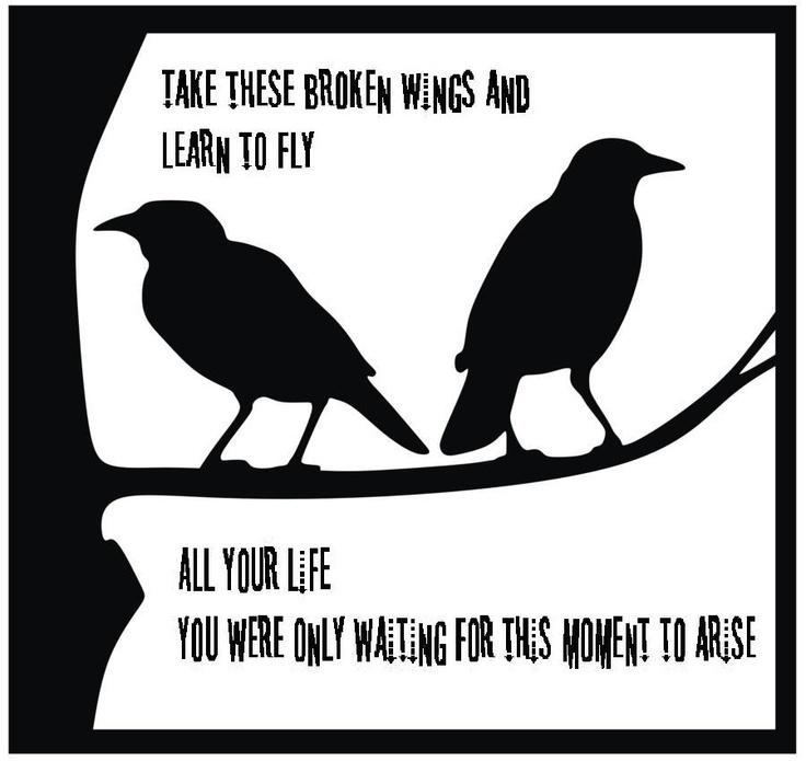 Glee Cast - Blackbird Lyrics | MetroLyrics