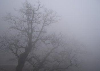 В Украине во вторник будет холодно и туманно дожди ослабнут - Интерфакс - Украина