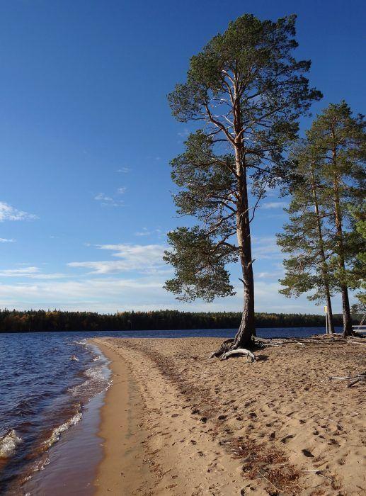 Orhinselänniemi sandbar in Miekojärvi, an Arctic Circle lake in Lapland