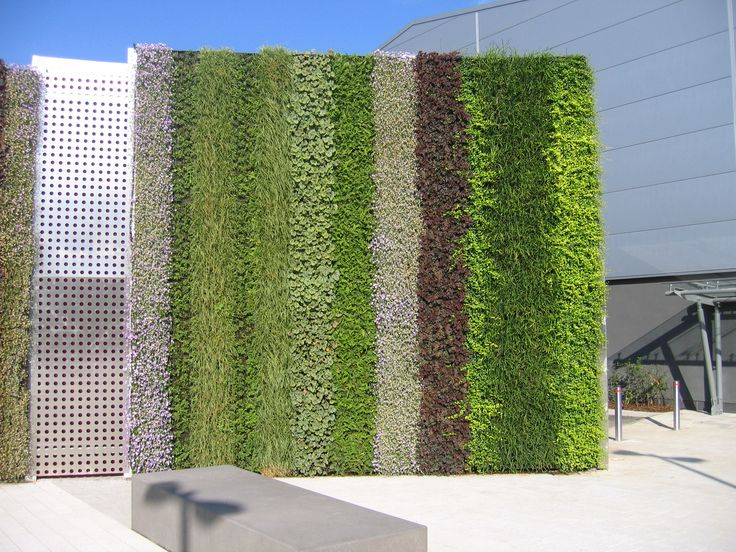 232 best images about green living walls vertical garden for Vertical green wall