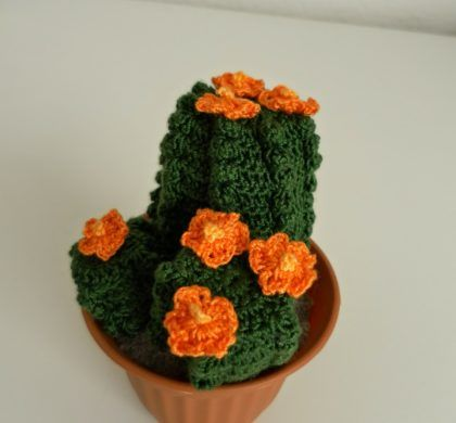 Amigurumi Cactus Nopal : 555 best images about cactus uncinetto on Pinterest Free ...