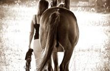 Equestrian   Kim Steinberg
