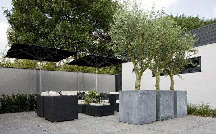 Pflanzer Ideen Um Sie In Terrassen Und Balkonen Zu Nutzen Mit Bildern Zeitgenossischer Garten Garten Landschaftsbau Hinterhof