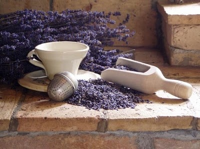 1000 Images About Lavanda On Pinterest French Lavender Lavender Fields And Lavender Tea