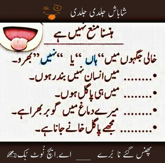 Funny Poetry Quotes In Urdu: 71 Best JOKES (PATHAN) Images On Pinterest