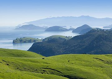 The Coromandel New Zealand can't beat it
