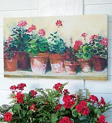 Kathleen 39 s geraniums outdoor canvas print artwork weather resistant print can be hung on the - Care geraniums flourishing balcony porch ...