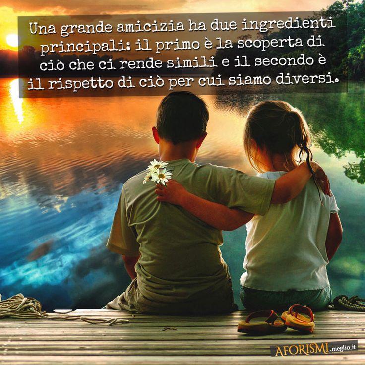 Una grande amicizia ha due ingredienti principali: il primo è la scoperta di ciò che ci rende simili e il secondo è il rispetto di ciò per cui siamo diversi.