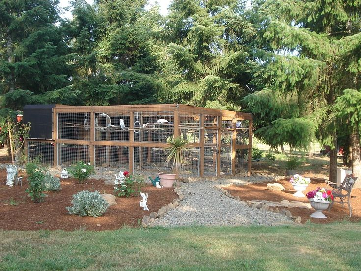 Outdoor aviary for parrots Farm ideasOutdoor spaces Pinterest