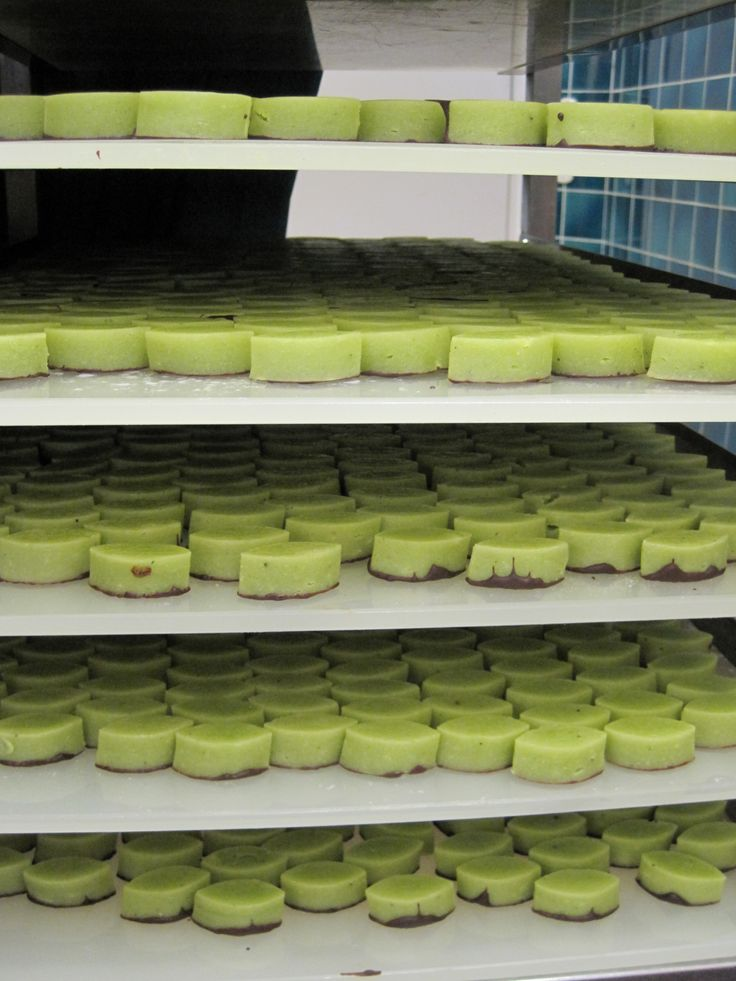 "Some pistachio centers at Michel Chaudun's, waiting for their ""robes"", or chocolate coating."