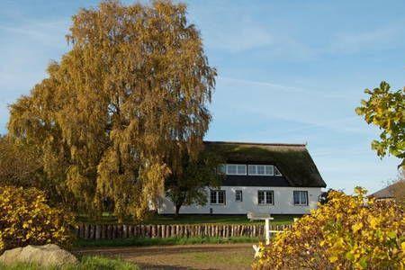 Schau Dir dieses großartige Inserat bei Airbnb an: Ferienwohnung Landruhe - Wassernähe - Apartments zur Miete in Lancken-Granitz