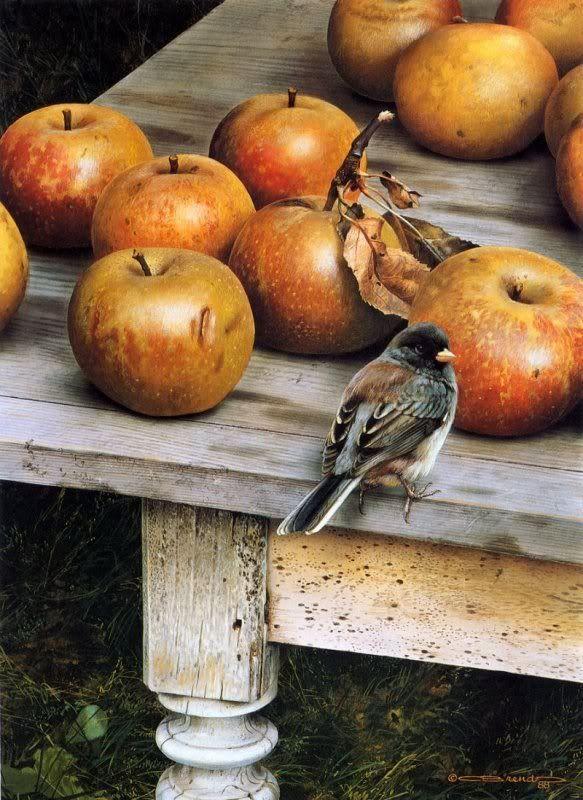 Le petit oiseau et les pommes