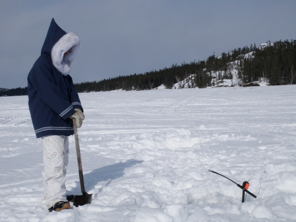9 best nwt fishing images on pinterest fishing hunting for Ice fishing games free