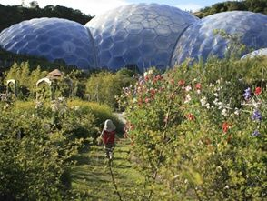 The Eden Project near to Deerpark #Cornwall.  Discounted tickets can be added through your booking! Things To Do in the Deerpark, Cornwall - Forest Holidays #ForestRetreat #UKgetaway