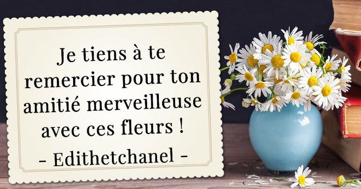 Envoie des fleurs tous tes amis blog de edith for Envoie de bouquet