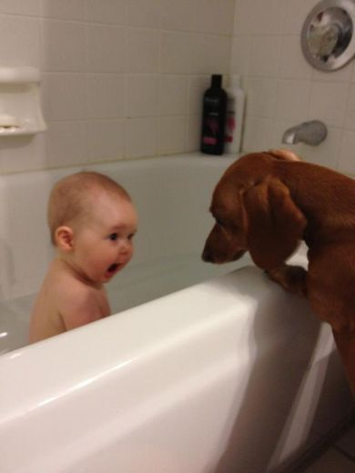 Oh my goodness! Adorable.: Funny Image, Funny Pics, Funny Pictures, Funny Baby Pictures, Baby Faces, Dogs Pictures, Baby Puppies, Funny Kids, Bath Time