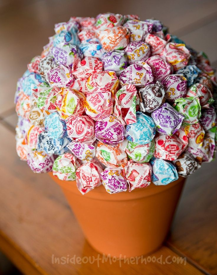 How to make your own lollipop plant! So cute! Would be perfect for a candy bar at a wedding or a children's birthday party!