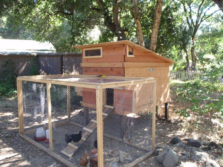 Vintage Chicken coops the top requirements to consider before building or buying one