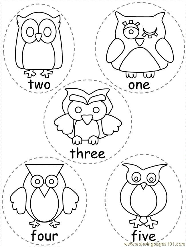 17 Best images about Owl Classroom ideas on Pinterest