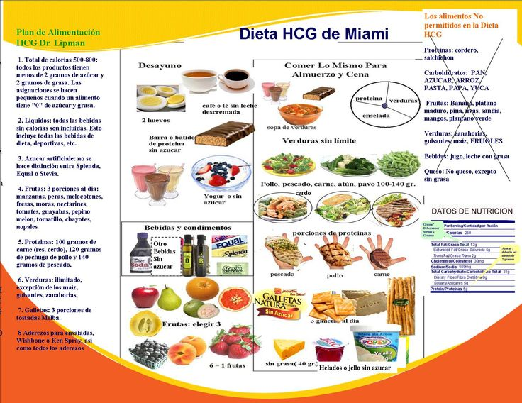 dr lipmans new 100 recipes on 800 calorie hcg diet