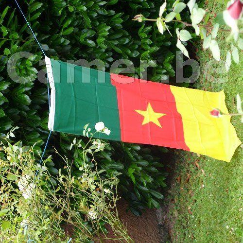 Correctif: Rassemblement de la Journée de Solidarité pour les Libertés au Cameroun Place du Châtelet à Paris Samedi 16 avril. Le rassemblement initialement pré