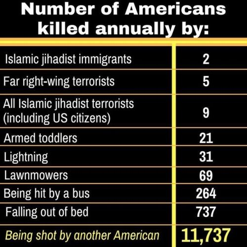 more damn people are killed by falling out of bed than those by terrorists.