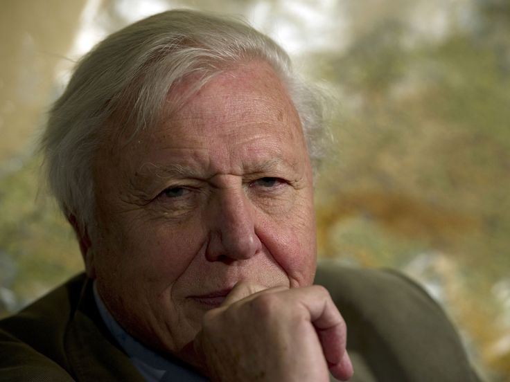 """Sir David Attenborough has said he feels """"unbelievably lucky"""" to be turning 90.  The naturalist and TV presenter, who will celebrate the milestone birthday on May 8, spent Saturday afternoon opening Woodberry Wetlands in London to the public for the first time in almost 200 years.  Asked about how he feels about the birthday, he said: """"The truthful answer is that I feel unbelievably lucky."""