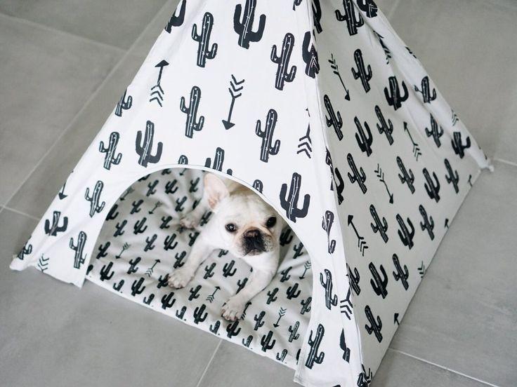 Cactus Dog Teepee