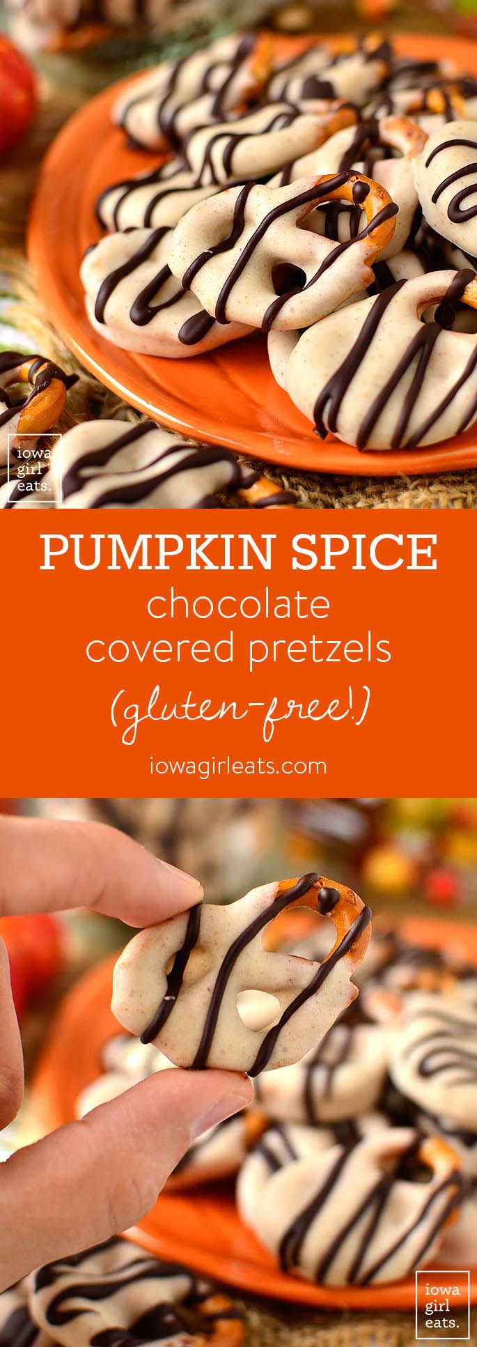 Pumpkin Spice Chocolate Covered Pretzels are absolutely irresistable - dare you to stop at just one! This easygluten-free dessert recipe calls for just 4 ingredients, and 15 minutes. | iowagirleats.com