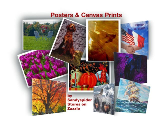 #Posters & Canvas #Prints by #sandyspider on #Polyvore featuring #art #wallart #homedeco on #Zazzle and #canvasprints View all my stores, open up Department and click on #Arts & Posters http://www.zazzle.com/mbr/238857335784557366/stores?rf=238857335784557366