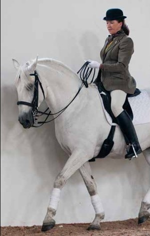 Lady Sylvia Loch is an accomplished author, columnist, lecturer, dressage judge and trainer and the only British person to be certified by the Portuguese National School of Equestrian Art. She founded the Lusitano Breed Society of Great Britain and subsequently founded The Classical Riding Club as well.