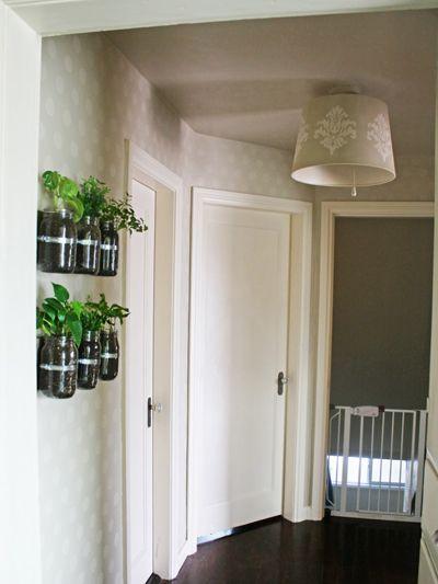 Mason Jar Wall Planters