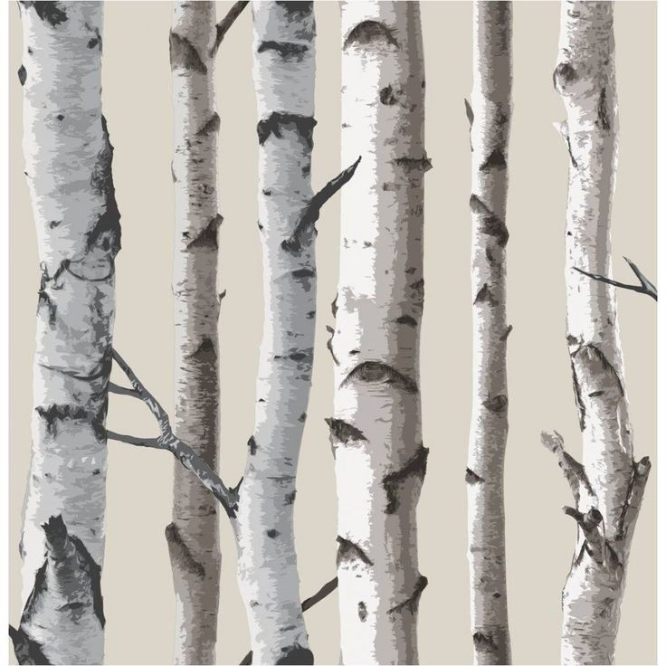 Fine Decor Birch Tree Designer Feature Wallpaper Natural Beige / Cream
