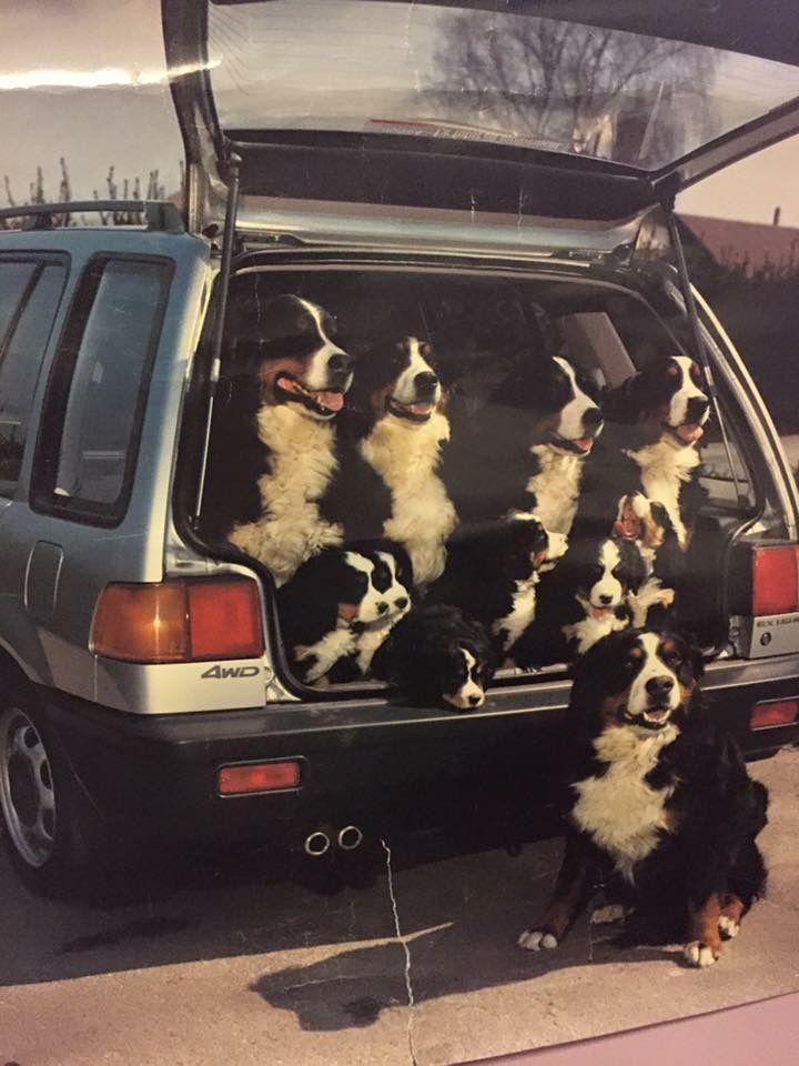 """Can we go now?""..#HappyFamilies"