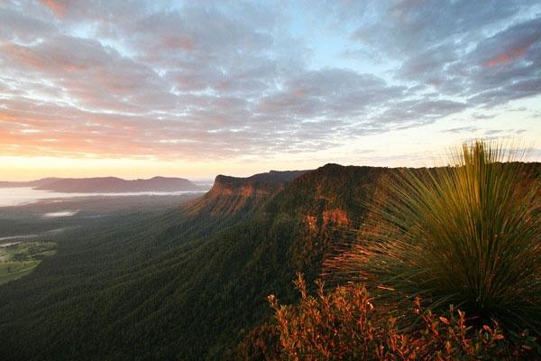 Melissa Cameron Photography  http://www.mfcphotography.com.au/landscape.html#  Border Ranges NSW