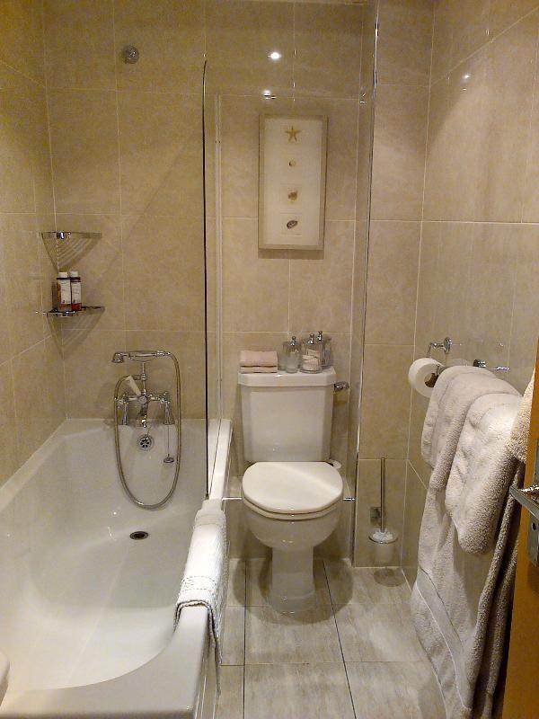 Small Bathroom Ideas With Shower Over Bath