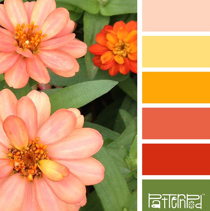 Color Palette: Green, Peach, Yellow, Coral.  If you like our color inspiration sign up for our monthly trend letter - click the image for the link.