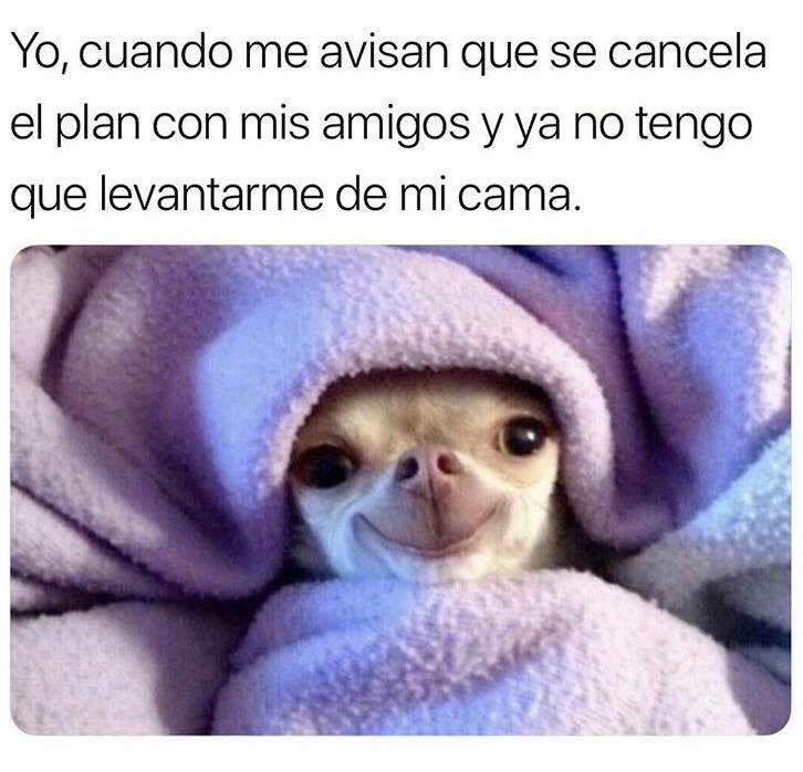 Pin En Spanish Memes