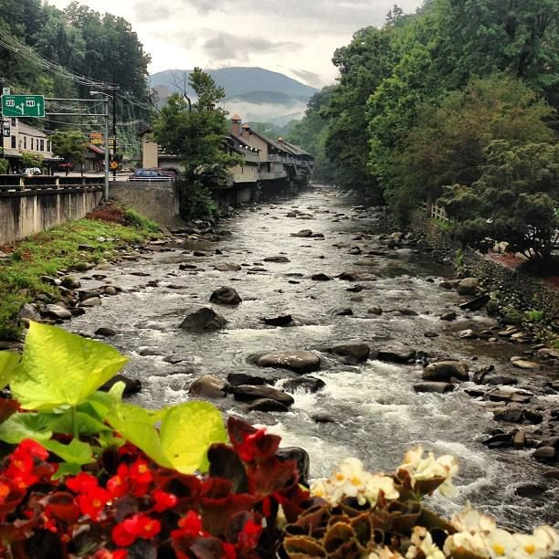 160 Best Images About Scenic Smoky Mountains On Pinterest