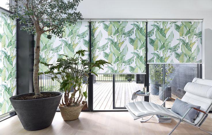 Lad solen skinne og temperaturen stige, - den tropiske trend er det hotteste hotte! Har du mod til trendy oversize og lyst til grønt, er det botaniske flyttet ind på et øjeblik, så du er klar til lounge og get-away-stemning derhjemme #luxaflexdk #gardiner #gardininspiration #rullegardiner #stue #botanik #botanic #oversize #boligindretning #vinduer #trend #indretning
