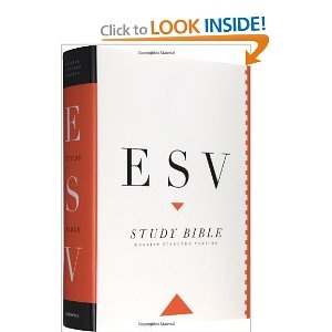 ESV Study Bible.  Produced by Crossway Bibles.  Study notes explain things, and overviews to each book provide helpful, insightful information.