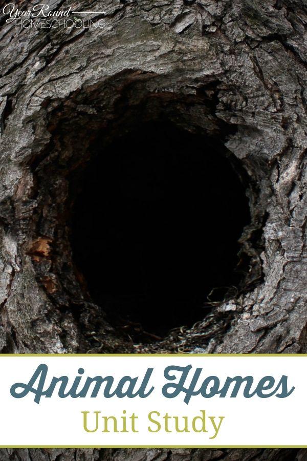 Animal Homes Unit Study -