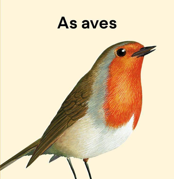 """As aves, con 30 ilustracións de Calros Silvar, é para aprender, identificar e provocar interese polo mundo das aves nas nenas e nenos.  Este libro ten como obxectivos incrementar o uso do galego na educación infantil, proporcionar materiais en galego para nenas/os de 0 a 6 anos, potenciar o uso de vocabulario en galego e aprender o nome de aves galegas comúns.  Este libro compleméntase con unha canción de Magín Blanco, """"Voa paxariño""""."""