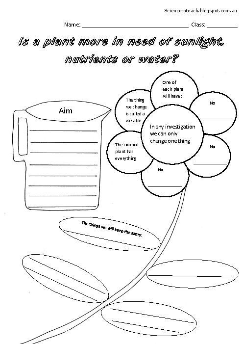 Scientific investigation worksheets The needs of a plant