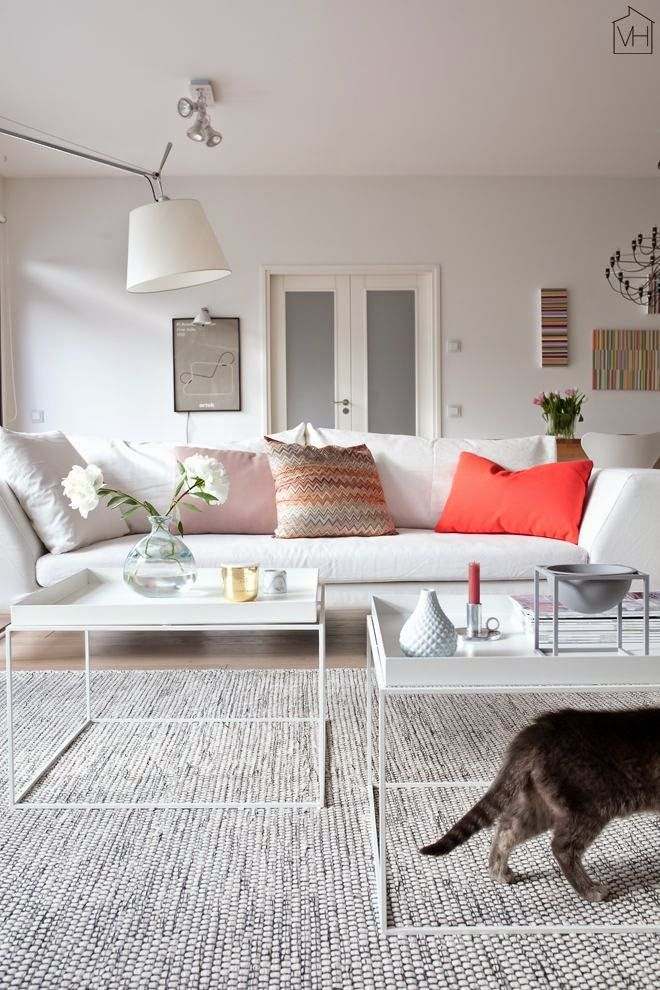 Salon contemporain, maison scandinave