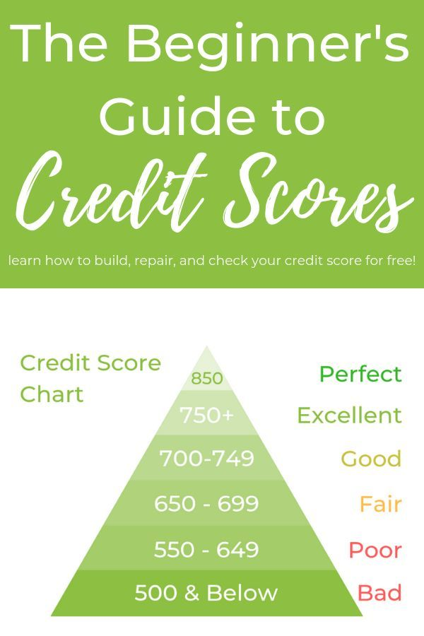 The Beginner S Guide To Credit Scores Beginners Credit Guide
