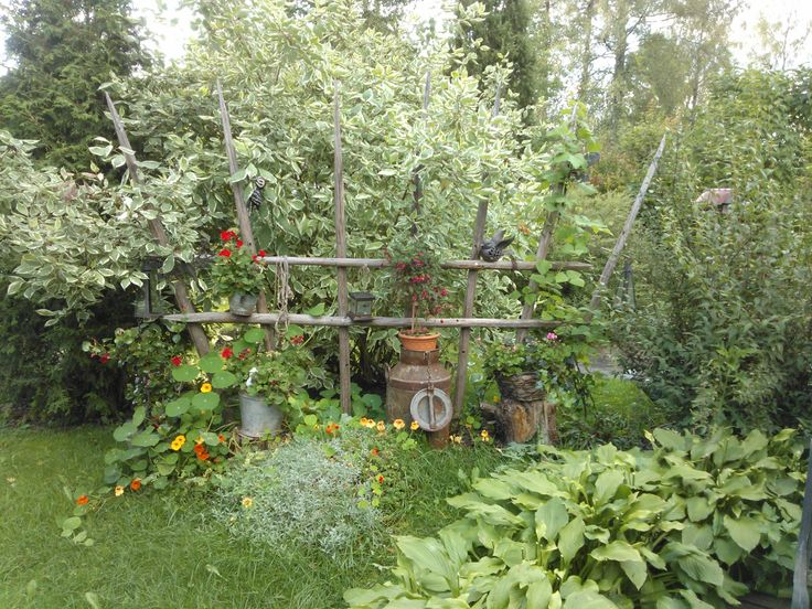 Äidin puutarha, lopputulos