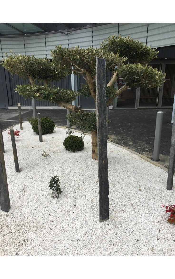 Piquet Ardoise BRUT 1 Mètre in Jardin, terrasse, Clôtures de jardin, Piquets de clôture | eBay