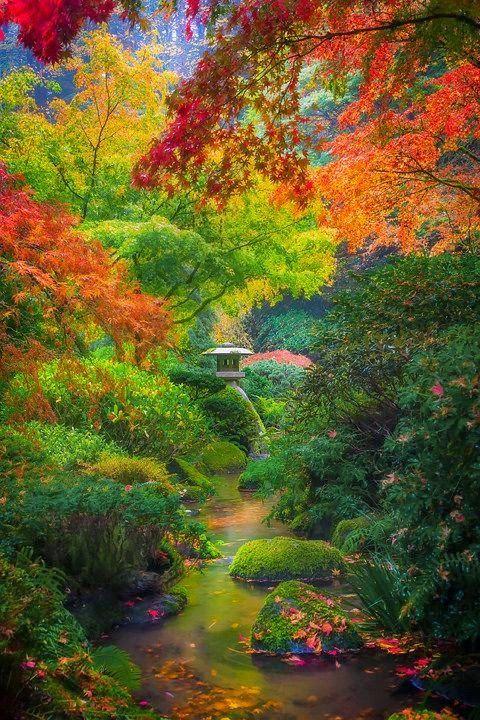 Autumn Serenity In Portland, Oregon Japanese Gardens